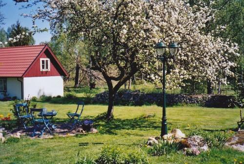 Ferienhaus Björkadal