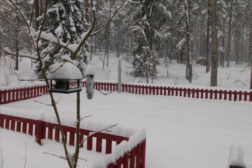 Garten im Winter - Ferienhaus Tuna